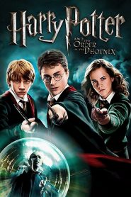 Harry Potter i Zakon Feniksa (2007)